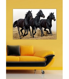 Horse Trio Canvas Tablo